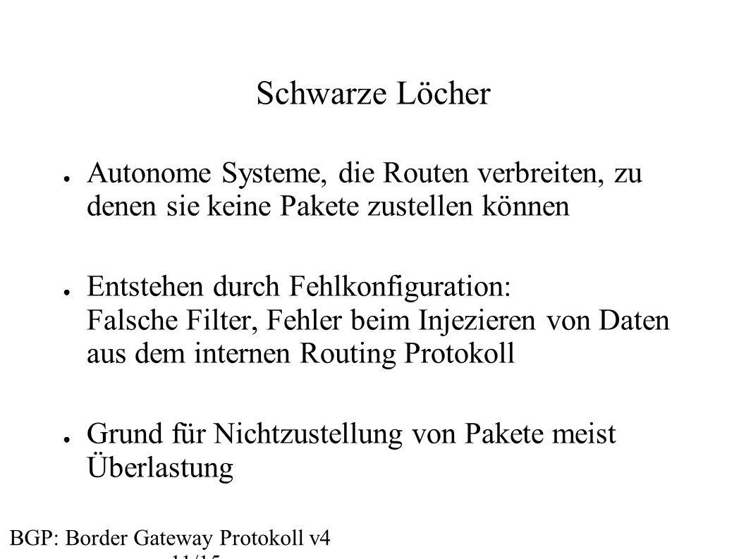Schwarze Löcher Autonome Systeme, die Routen verbreiten, zu denen sie keine Pakete zustellen können.