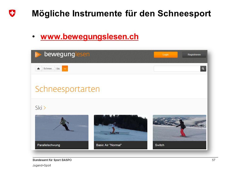 Mögliche Instrumente für den Schneesport