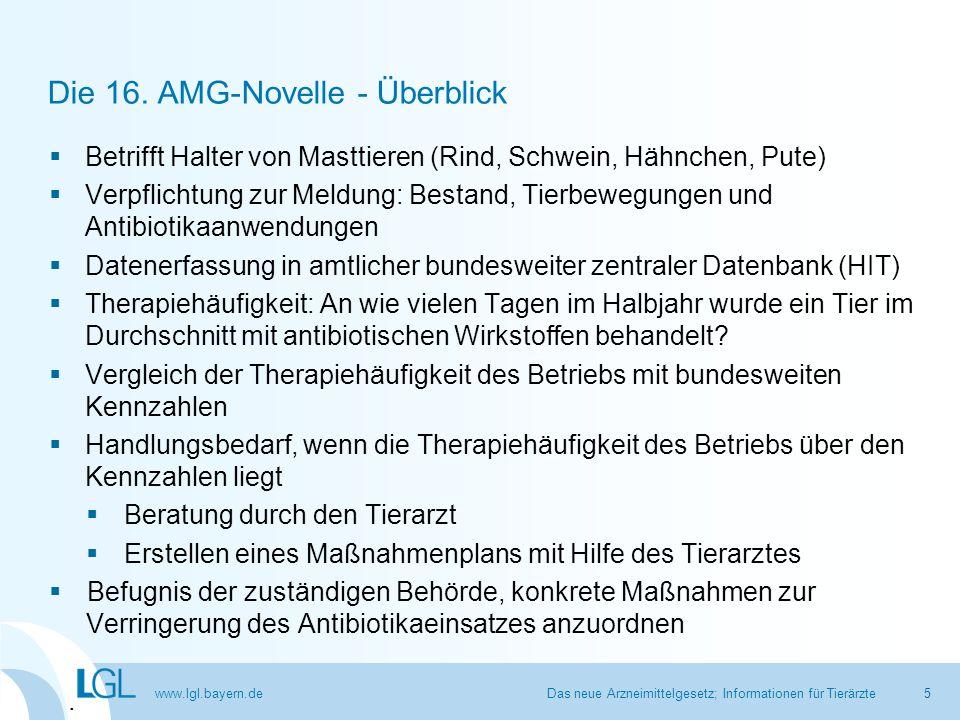 Die 16. AMG-Novelle - Überblick