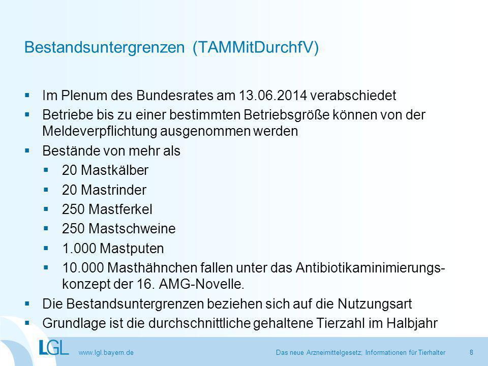 Bestandsuntergrenzen (TAMMitDurchfV)