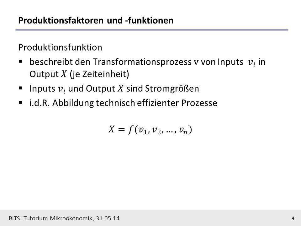 Produktionsfaktoren und -funktionen