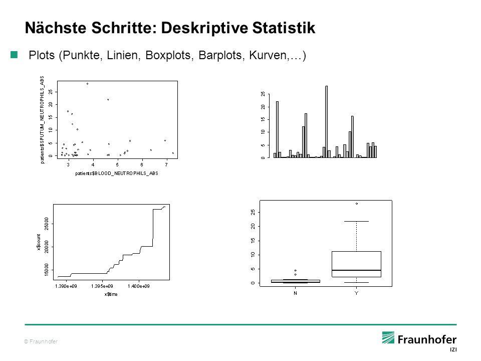 Nächste Schritte: Deskriptive Statistik
