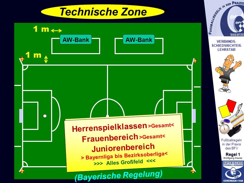 Technische Zone 1 m 1 m Herrenspielklassen >Gesamt<