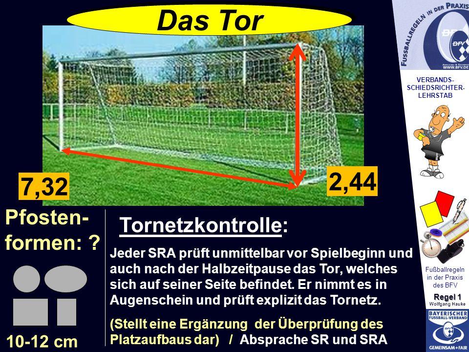 Das Tor 2,44 7,32 Pfosten- Tornetzkontrolle: formen: 10-12 cm