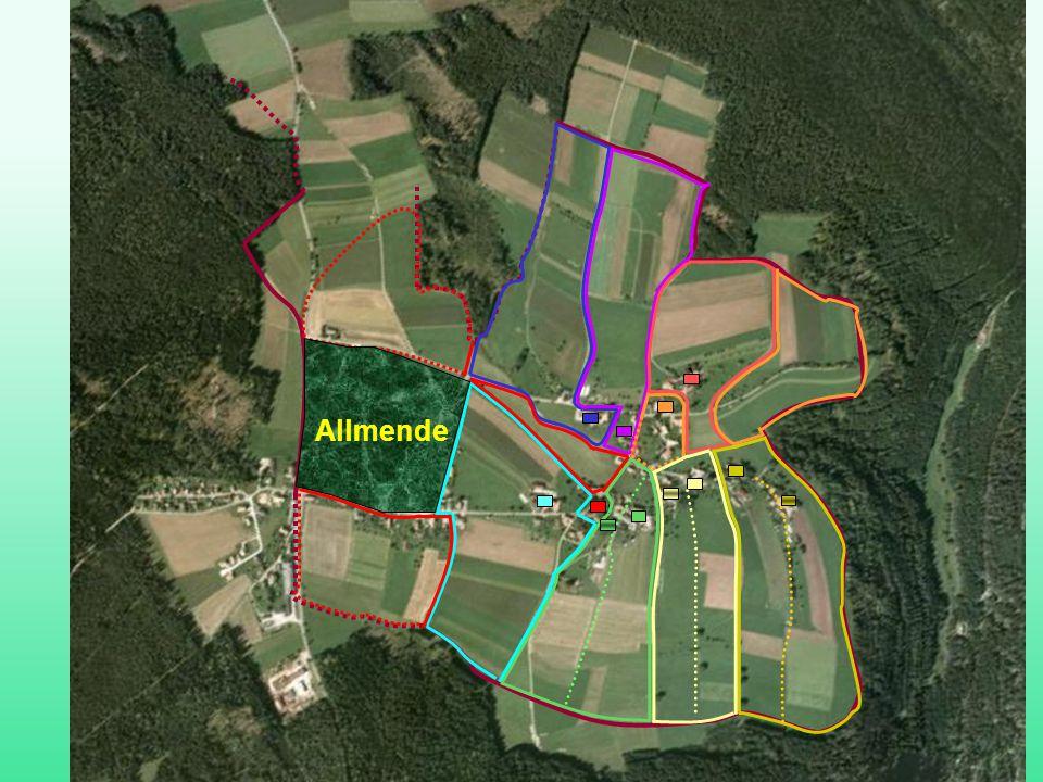 Ettmannsweiler Flursystem