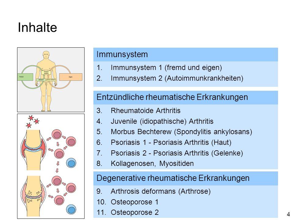 Inhalte Immunsystem Entzündliche rheumatische Erkrankungen