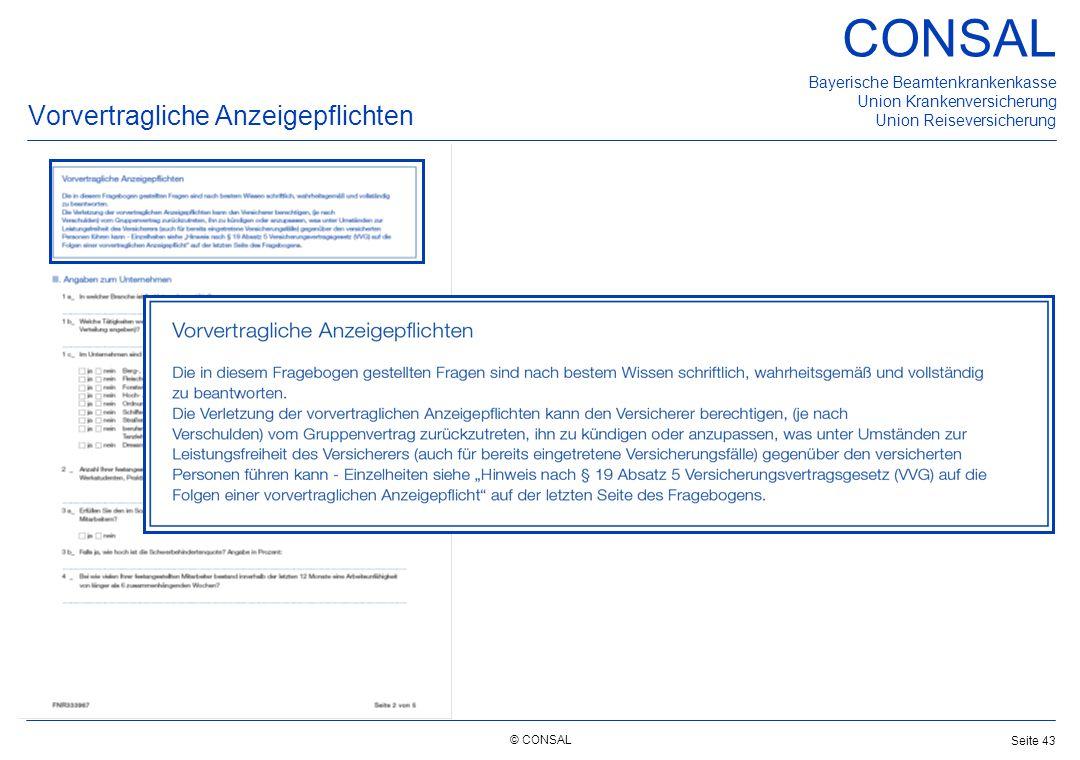Vorvertragliche Anzeigepflichten