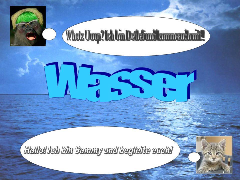 Wasser Whatz Uuup Ich bin Detlef und komm auch mit !