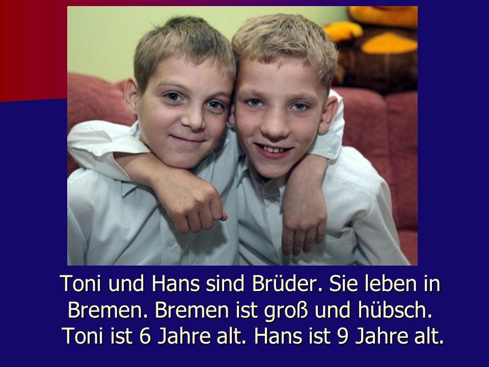 Toni und Hans sind Brüder. Sie leben in Bremen