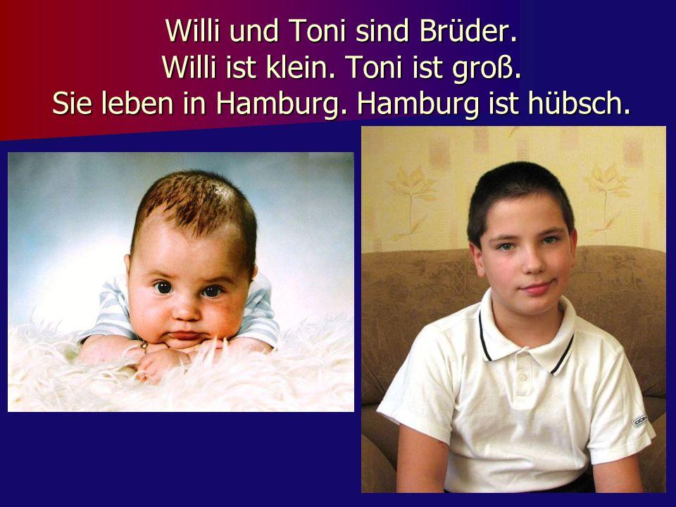 Willi und Toni sind Brüder. Willi ist klein. Toni ist groß