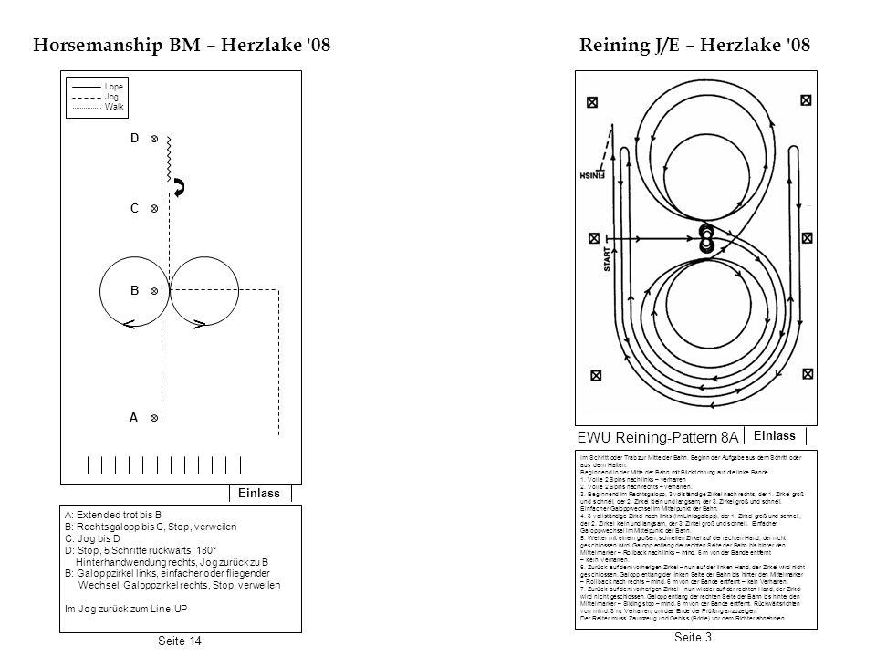 Horsemanship BM – Herzlake 08