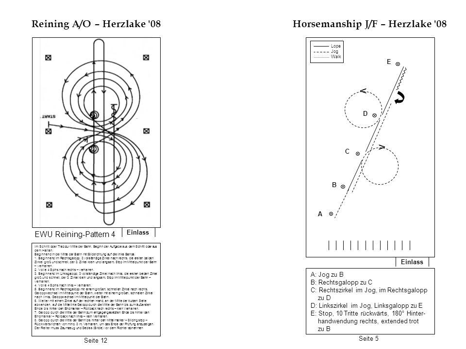 Horsemanship J/F – Herzlake 08