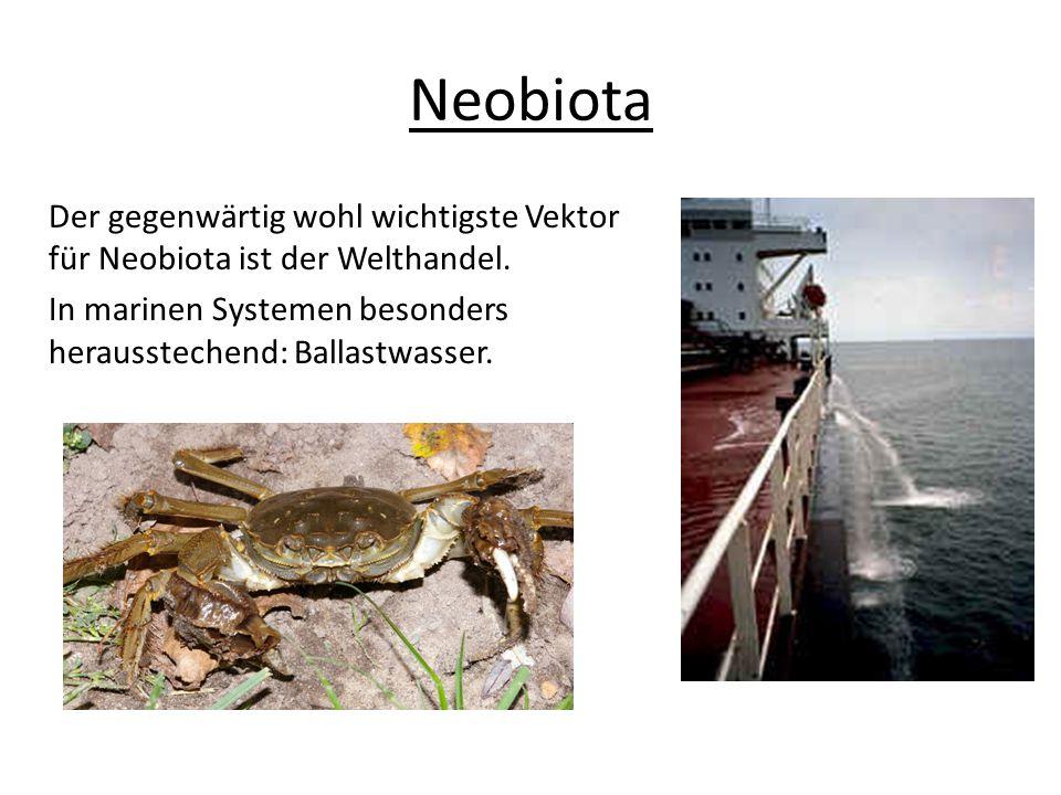 Neobiota Der gegenwärtig wohl wichtigste Vektor für Neobiota ist der Welthandel.