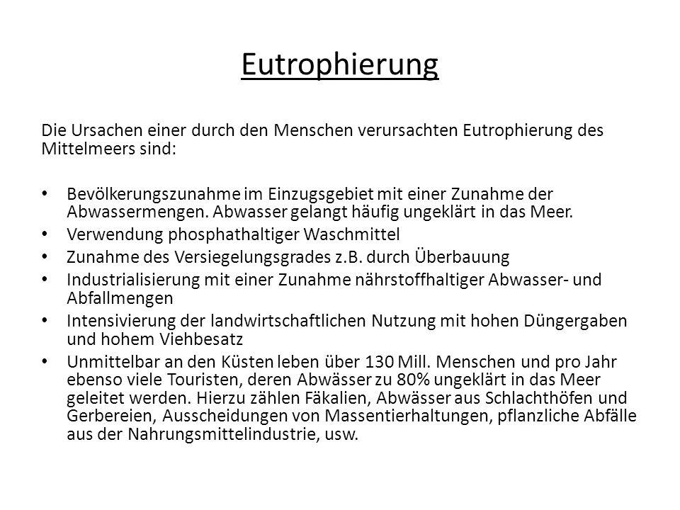 Eutrophierung Die Ursachen einer durch den Menschen verursachten Eutrophierung des Mittelmeers sind: