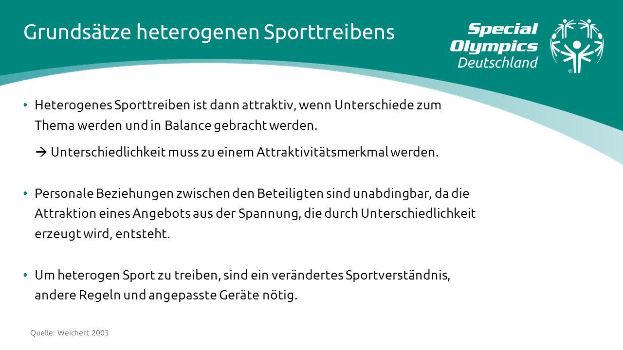 Grundsätze heterogenen Sporttreibens