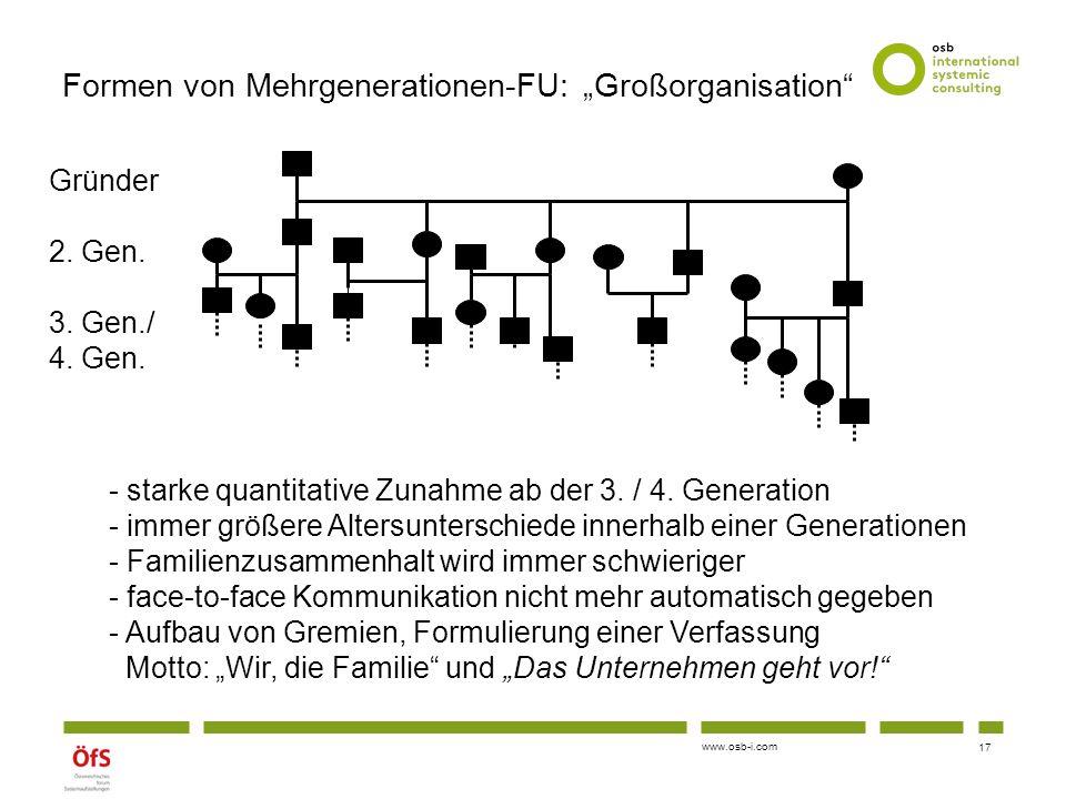 """Formen von Mehrgenerationen-FU: """"Großorganisation"""