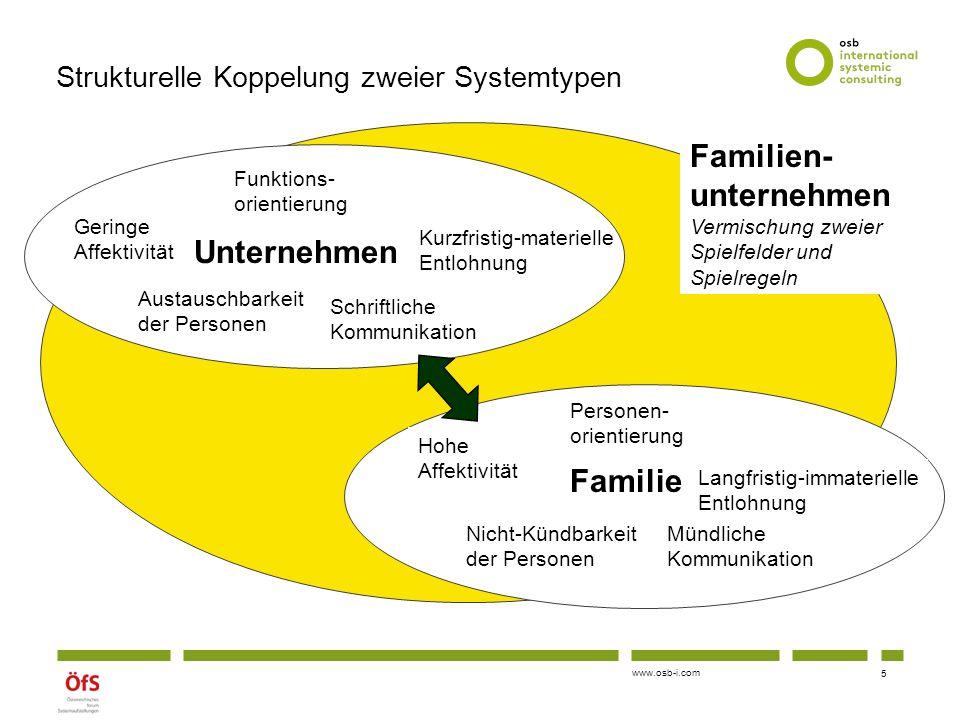 Strukturelle Koppelung zweier Systemtypen
