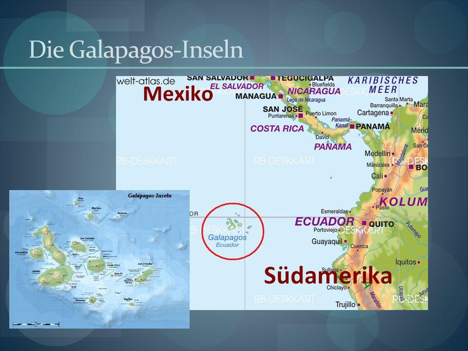 Die Galapagos-Inseln