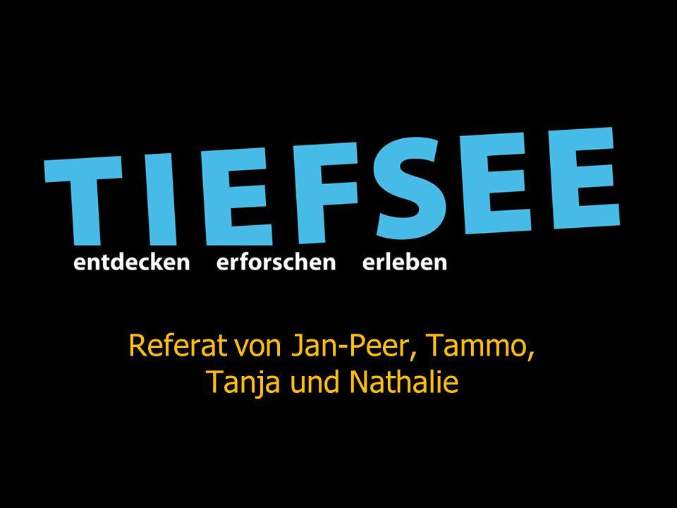 Referat von Jan-Peer, Tammo, Tanja und Nathalie