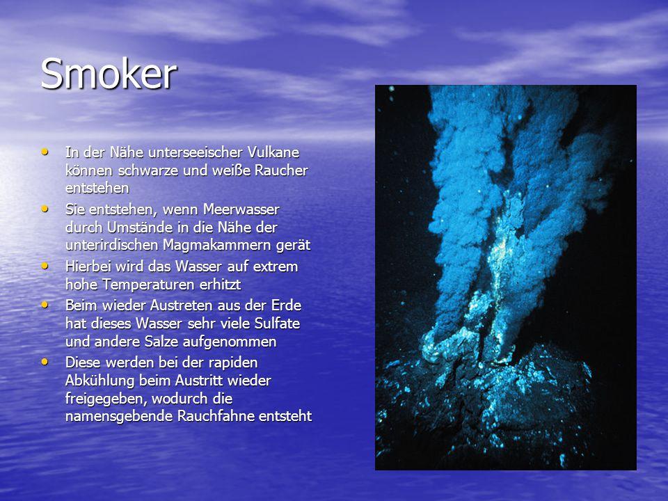 Smoker In der Nähe unterseeischer Vulkane können schwarze und weiße Raucher entstehen.