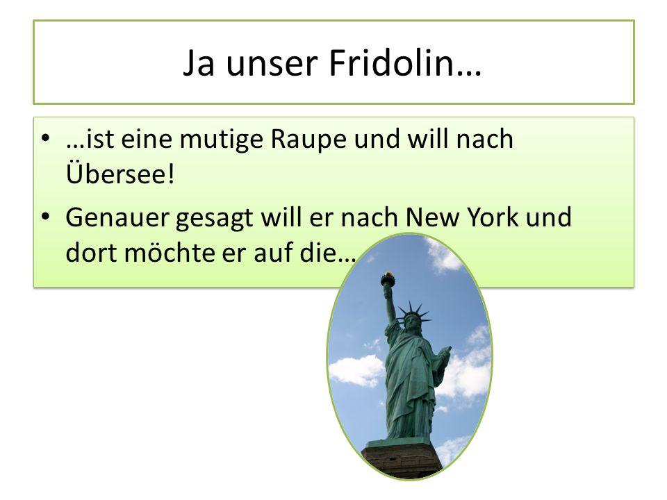 Ja unser Fridolin… …ist eine mutige Raupe und will nach Übersee!