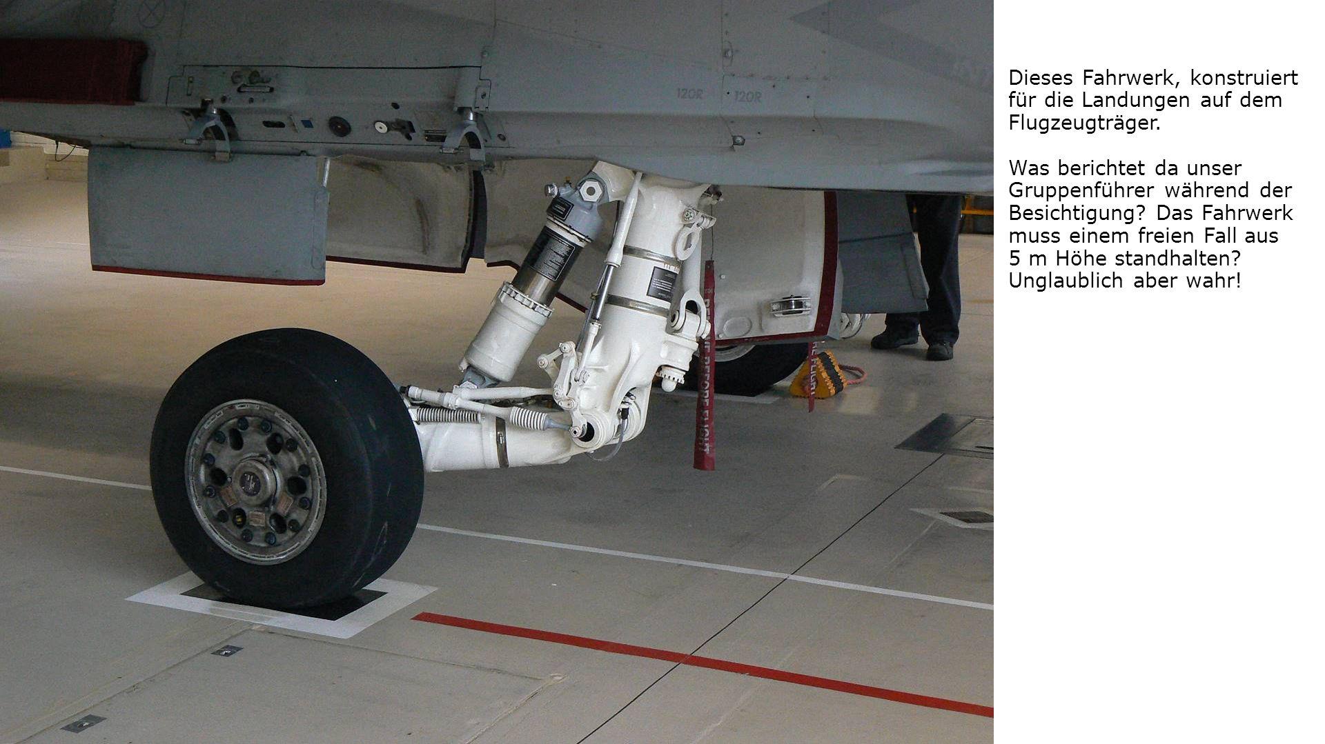 Dieses Fahrwerk, konstruiert für die Landungen auf dem Flugzeugträger.