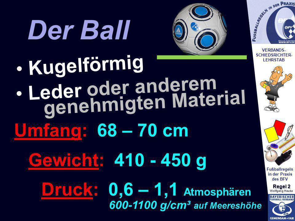 Der Ball Der Ball Kugelförmig Leder oder anderem Leder