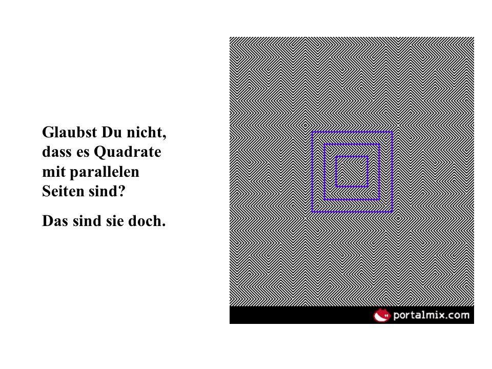 Glaubst Du nicht, dass es Quadrate mit parallelen Seiten sind