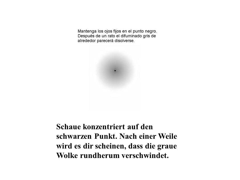 Schaue konzentriert auf den schwarzen Punkt