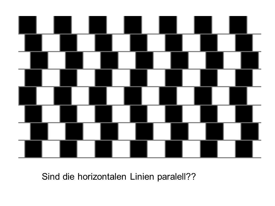 Sind die horizontalen Linien paralell