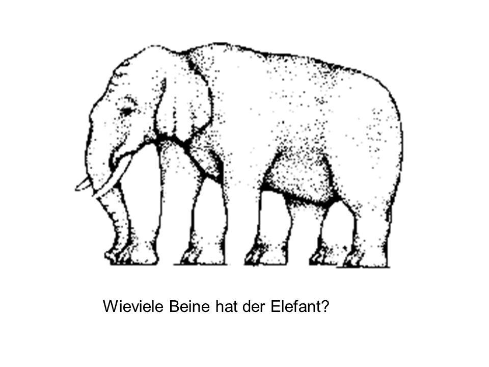 Wieviele Beine hat der Elefant