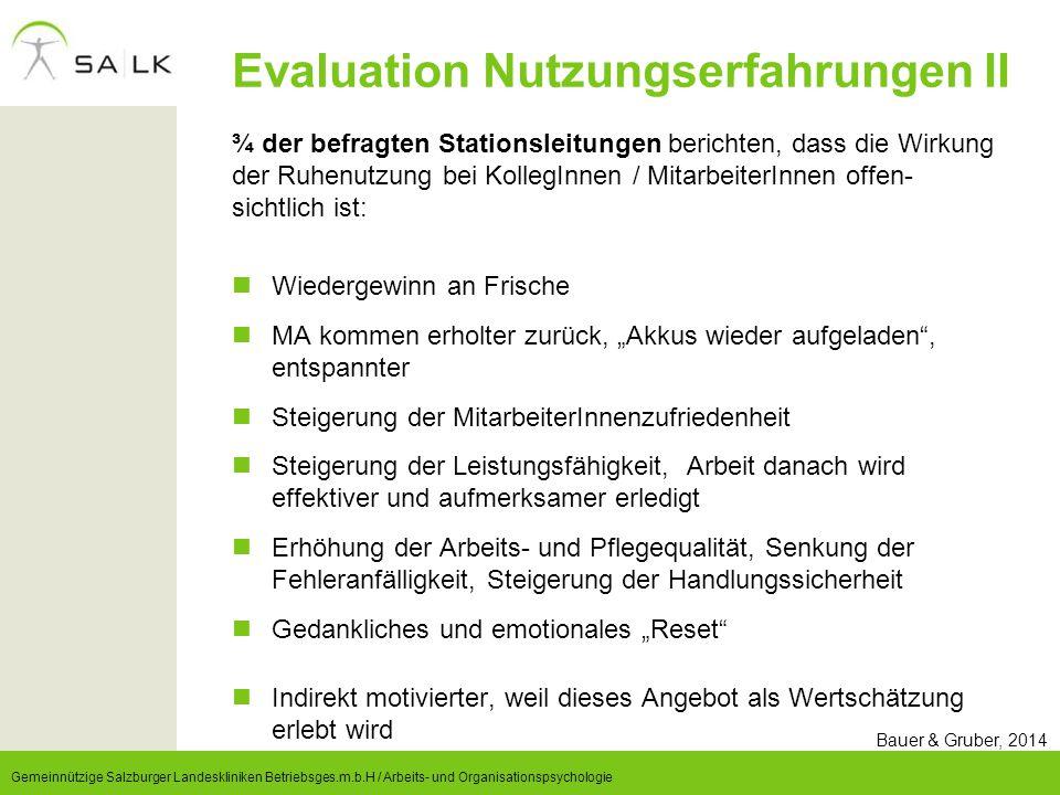 Evaluation Nutzungserfahrungen II