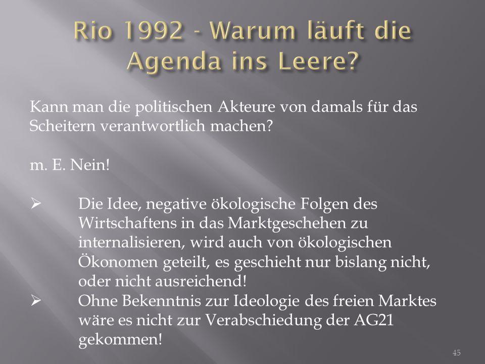 Rio 1992 - Warum läuft die Agenda ins Leere