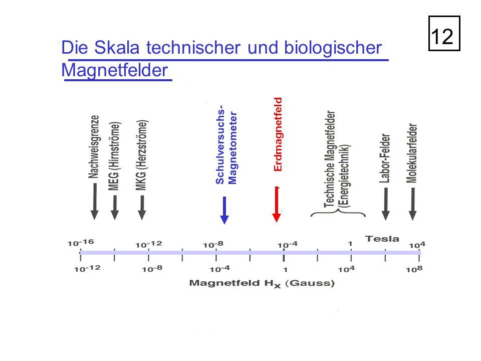 12 Die Skala technischer und biologischer Magnetfelder Erdmagnetfeld