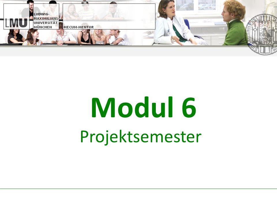 Modul 6 Projektsemester