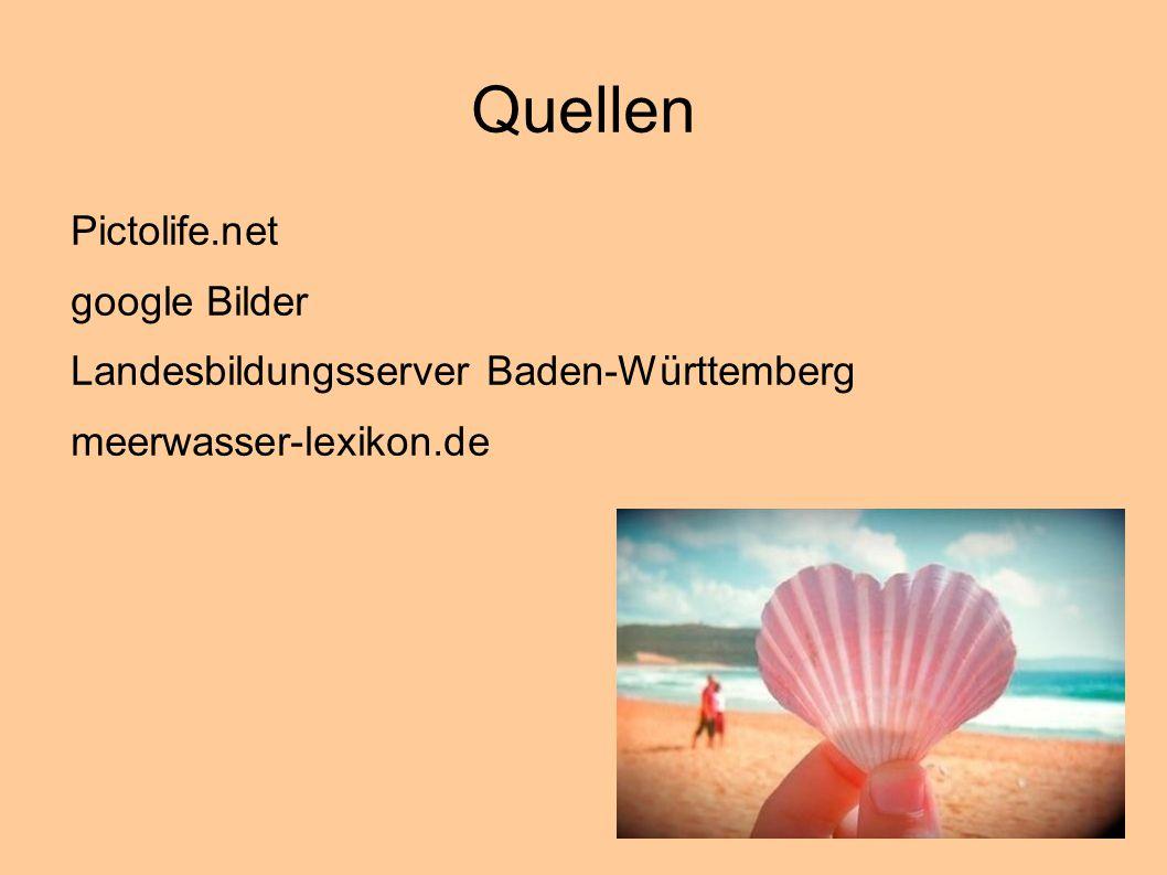 Quellen Pictolife.net google Bilder