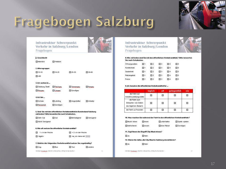 Fragebogen Salzburg