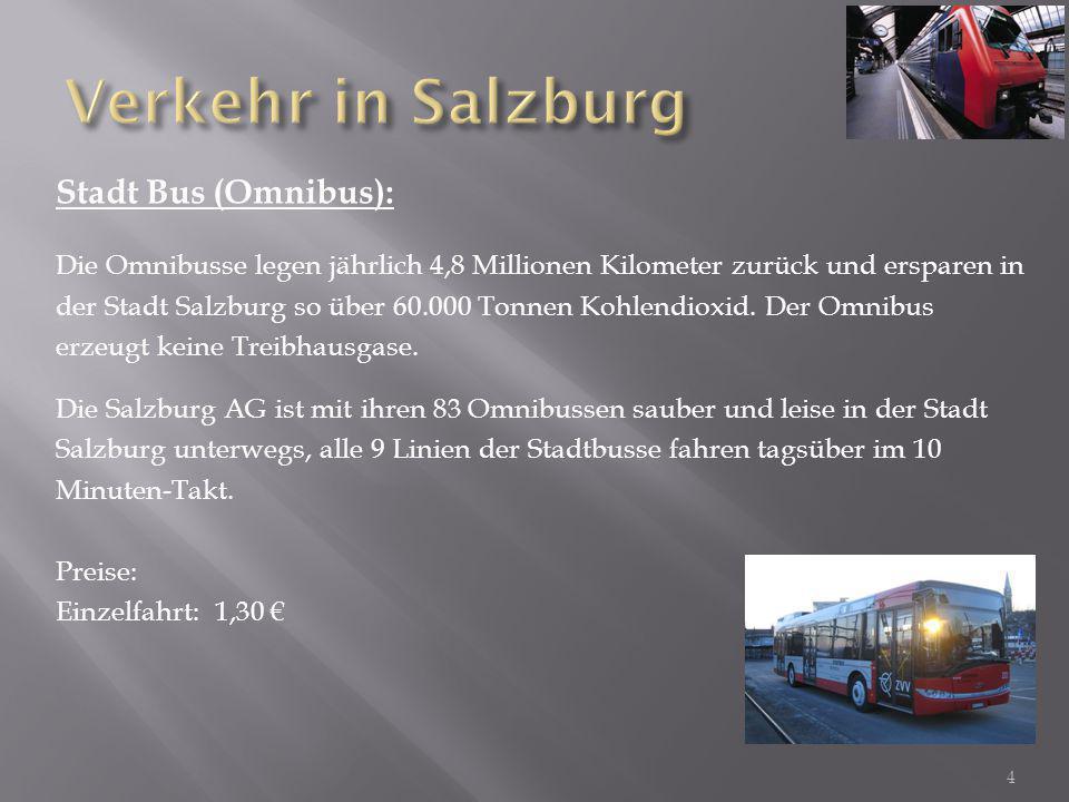 Verkehr in Salzburg Stadt Bus (Omnibus):