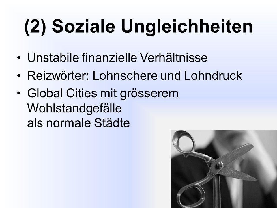 (2) Soziale Ungleichheiten