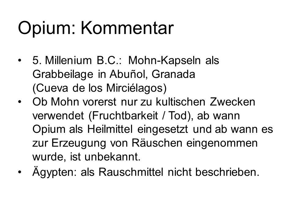 Opium: Kommentar 5. Millenium B.C.: Mohn-Kapseln als Grabbeilage in Abuñol, Granada (Cueva de los Mirciélagos)