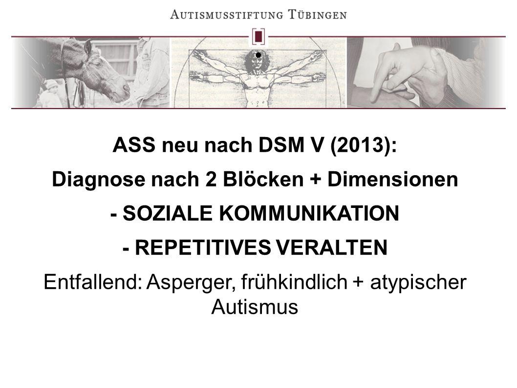 Diagnose nach 2 Blöcken + Dimensionen - SOZIALE KOMMUNIKATION