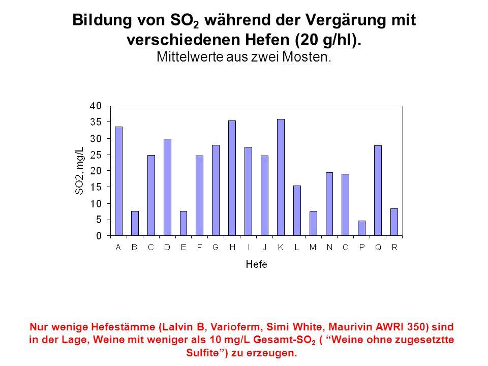 Bildung von SO2 während der Vergärung mit verschiedenen Hefen (20 g/hl). Mittelwerte aus zwei Mosten.