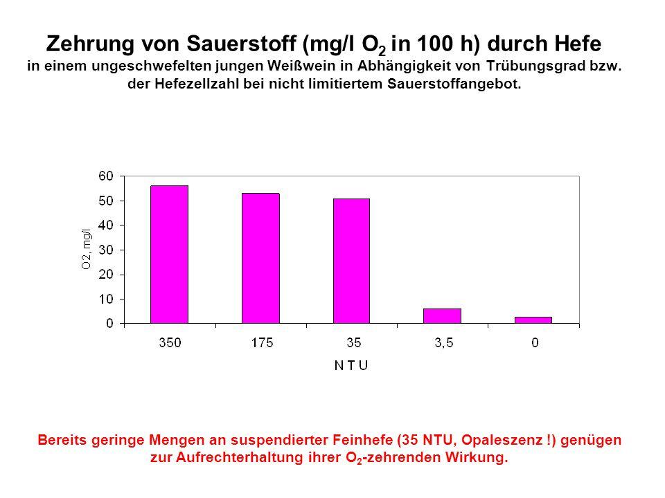 Zehrung von Sauerstoff (mg/l O2 in 100 h) durch Hefe in einem ungeschwefelten jungen Weißwein in Abhängigkeit von Trübungsgrad bzw. der Hefezellzahl bei nicht limitiertem Sauerstoffangebot.