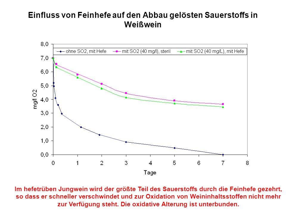 Einfluss von Feinhefe auf den Abbau gelösten Sauerstoffs in Weißwein