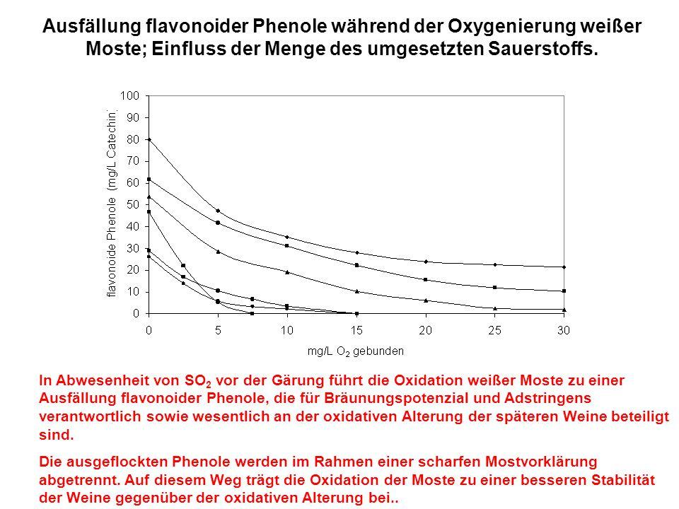Ausfällung flavonoider Phenole während der Oxygenierung weißer Moste; Einfluss der Menge des umgesetzten Sauerstoffs.