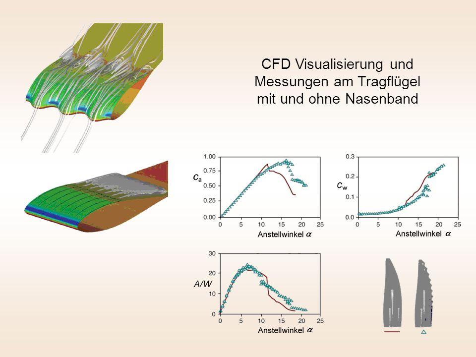 CFD Visualisierung und Messungen am Tragflügel mit und ohne Nasenband