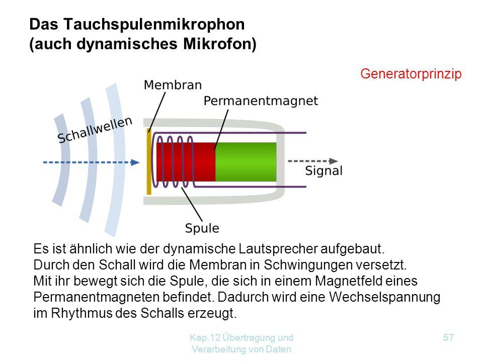 Das Tauchspulenmikrophon (auch dynamisches Mikrofon)