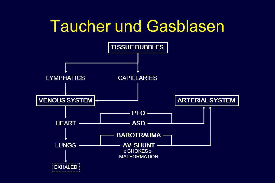 Taucher und Gasblasen TISSUE BUBBLES LYMPHATICS CAPILLARIES