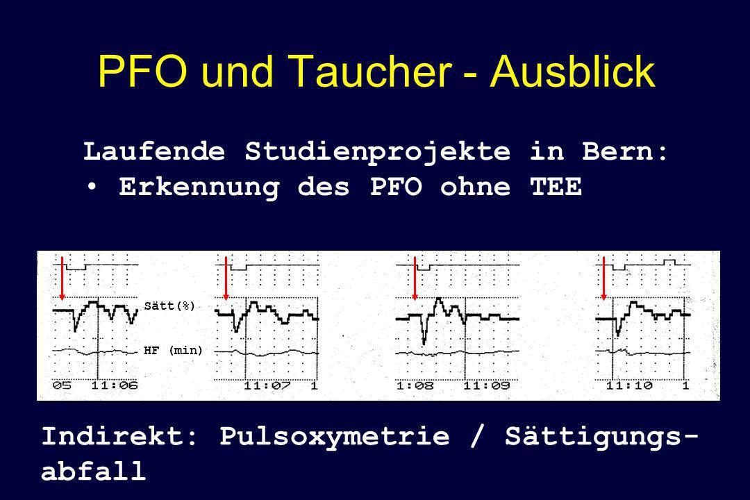 PFO und Taucher - Ausblick