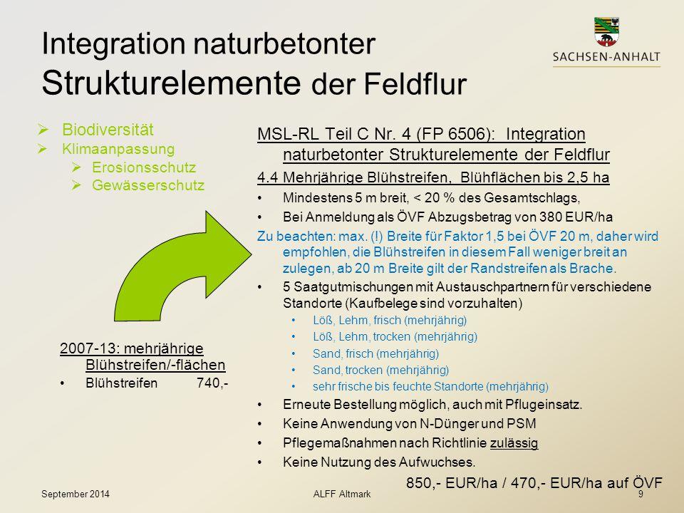 Integration naturbetonter Strukturelemente der Feldflur
